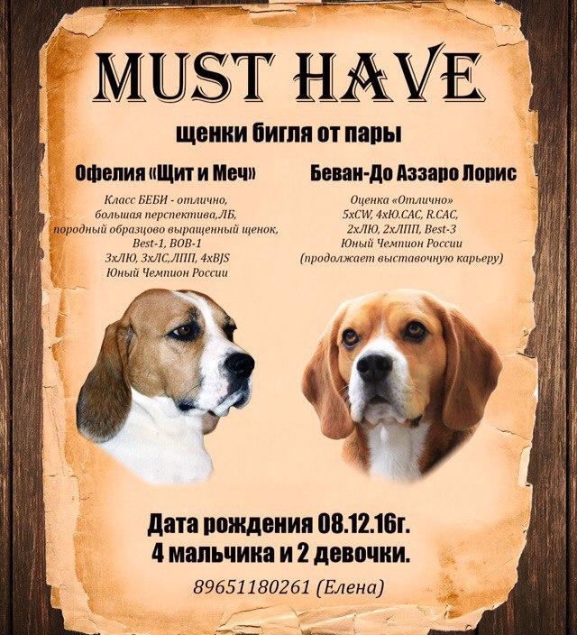 http://s8.uploads.ru/02BXp.jpg