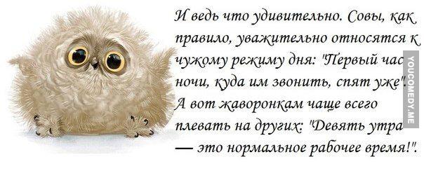 http://s8.uploads.ru/1xfrB.jpg