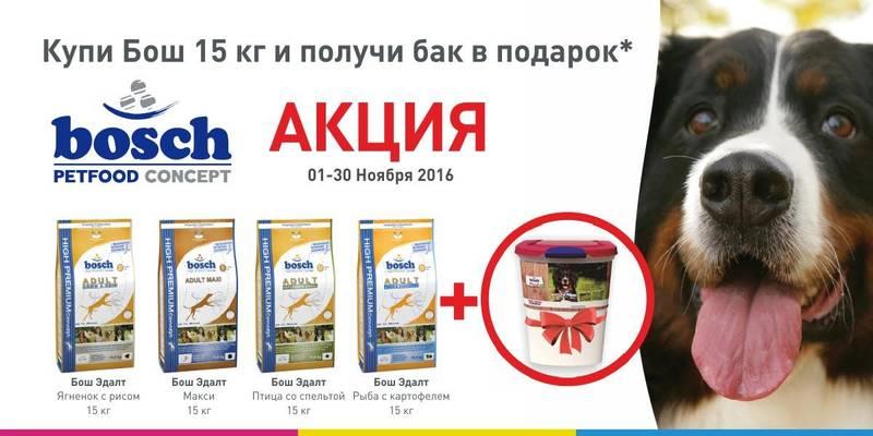 http://s8.uploads.ru/24bqo.jpg