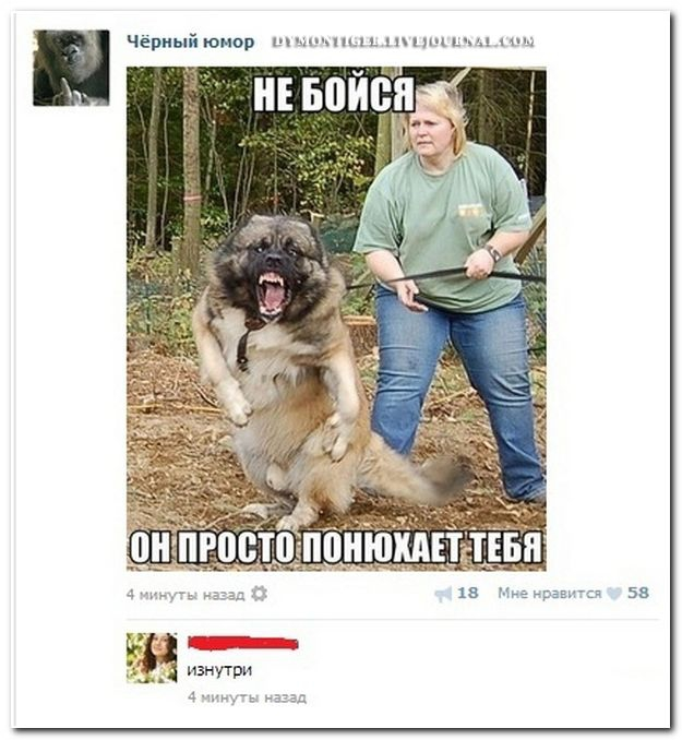 http://s8.uploads.ru/2EHh1.jpg