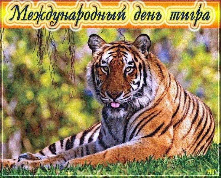http://s8.uploads.ru/2mdeq.jpg