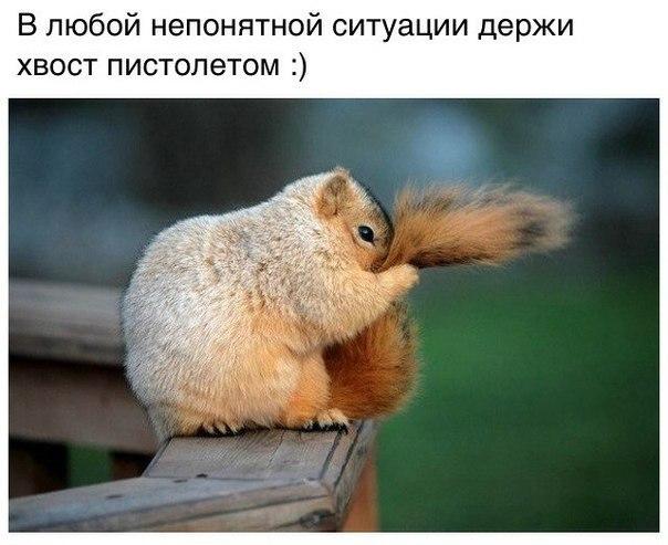 http://s8.uploads.ru/3Z6eB.jpg