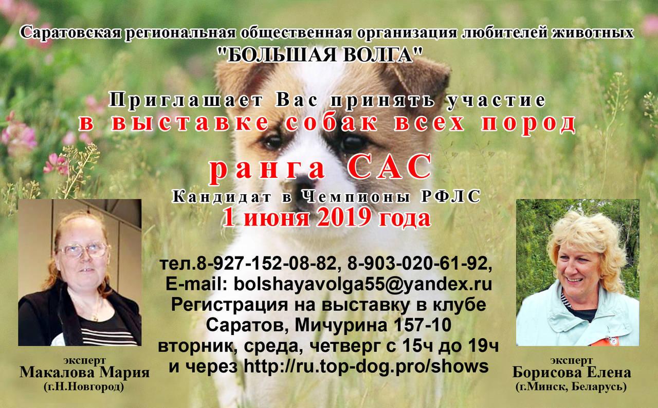 http://s8.uploads.ru/4Uqer.jpg