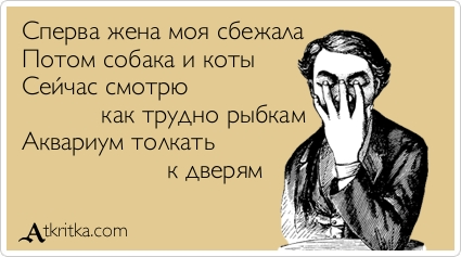 http://s8.uploads.ru/4gPJN.jpg