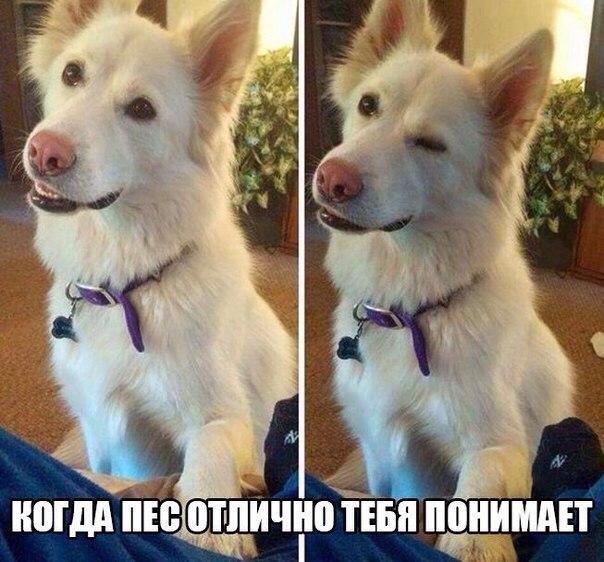http://s8.uploads.ru/7LNji.jpg