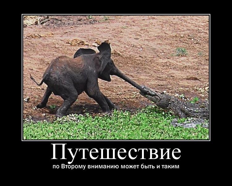 http://s8.uploads.ru/7ibgR.jpg