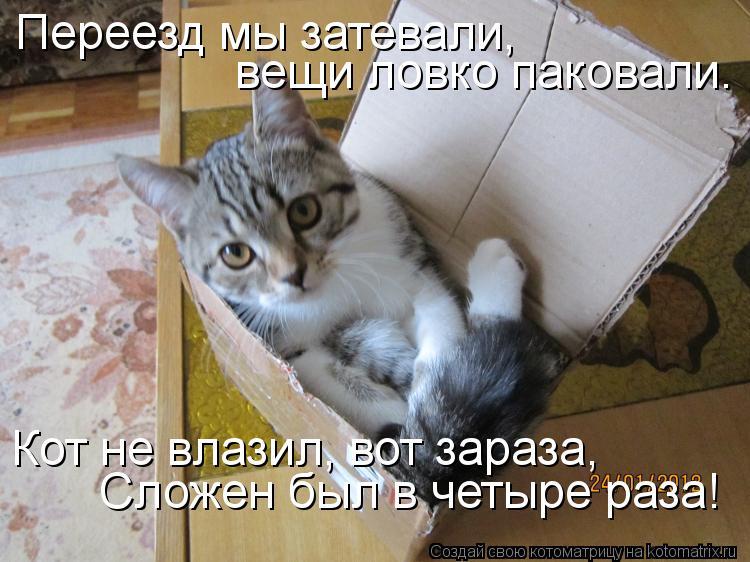 http://s8.uploads.ru/82zeg.jpg