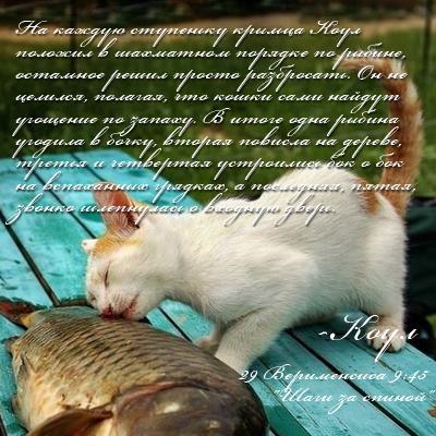 http://s8.uploads.ru/8skQB.jpg