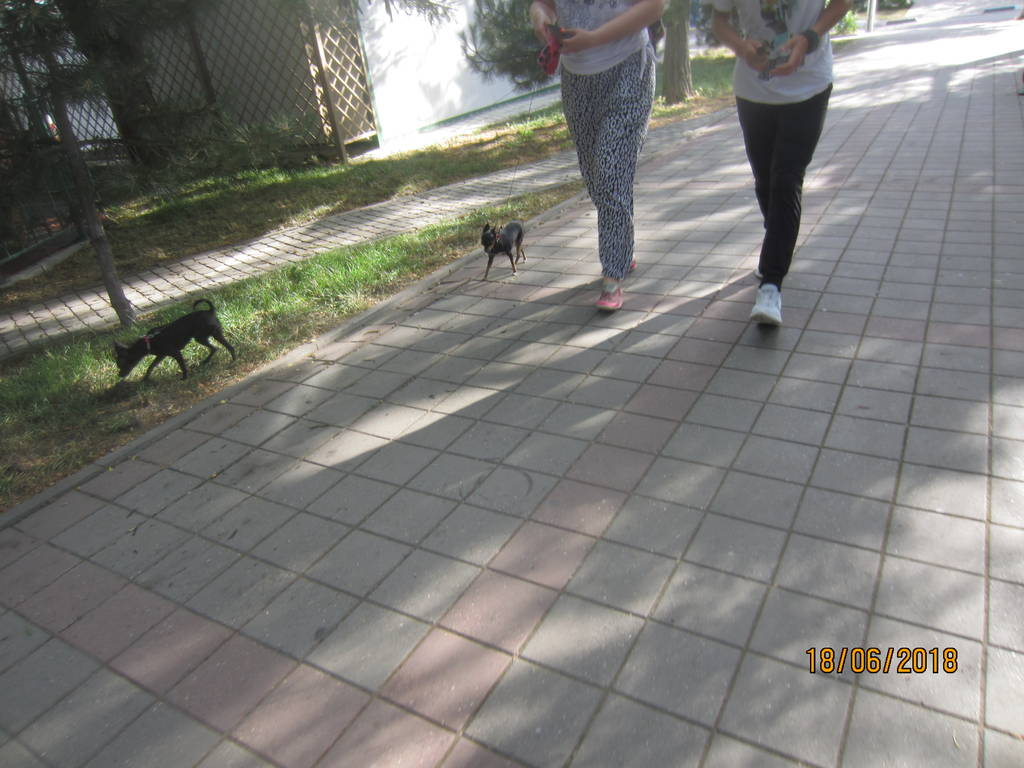 http://s8.uploads.ru/9b0UA.jpg