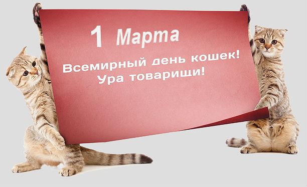 http://s8.uploads.ru/AByCU.jpg
