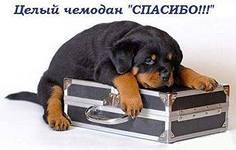 http://s8.uploads.ru/AIBxz.jpg