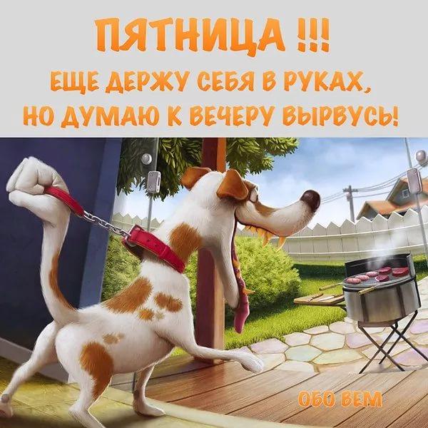 http://s8.uploads.ru/AoyuZ.jpg