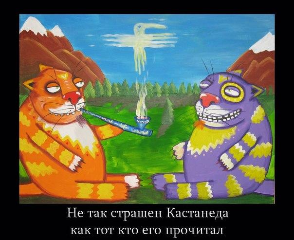 http://s8.uploads.ru/Bxepk.jpg
