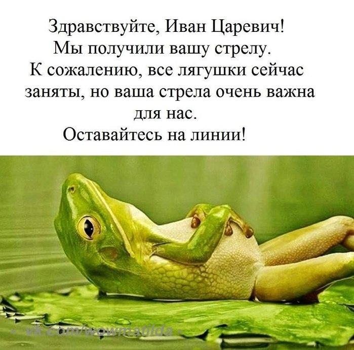 http://s8.uploads.ru/EK57n.jpg