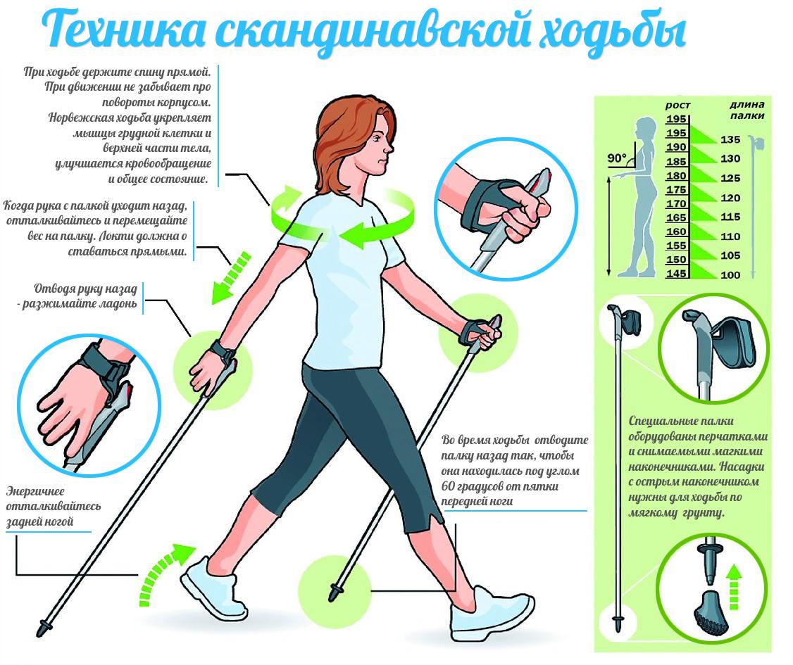 http://s8.uploads.ru/ELaCV.jpg