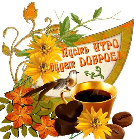 http://s8.uploads.ru/ERIip.jpg