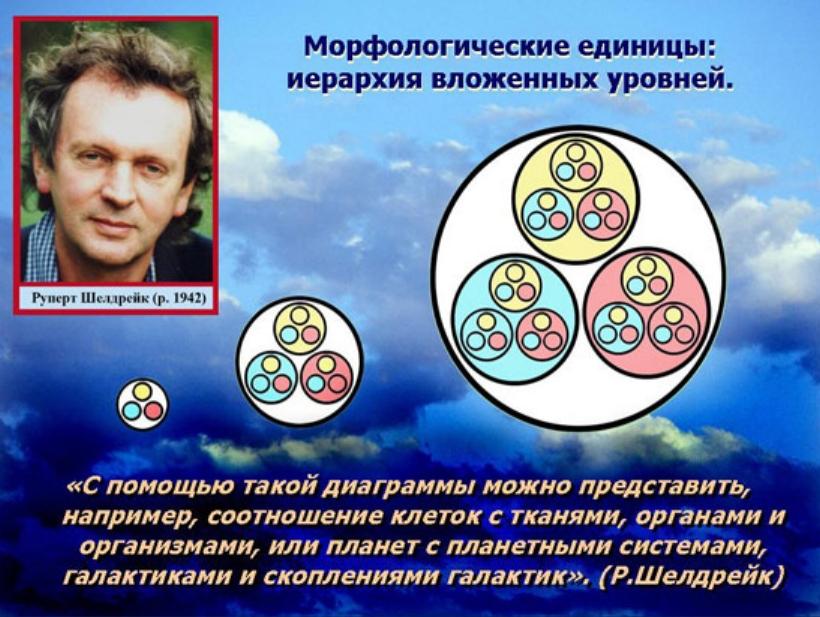 http://s8.uploads.ru/FevDX.jpg