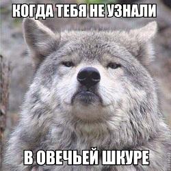 http://s8.uploads.ru/GWESA.jpg