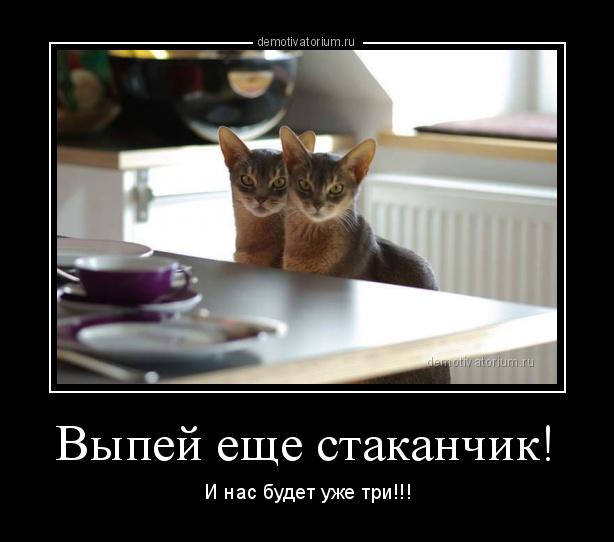 http://s8.uploads.ru/GvtIM.jpg