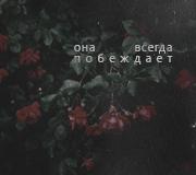 http://s8.uploads.ru/H2eGL.png