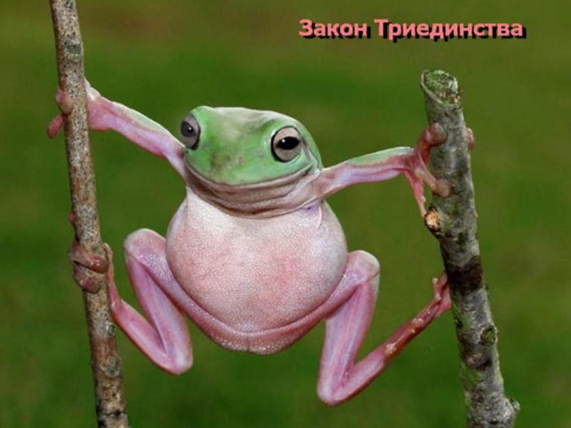 http://s8.uploads.ru/H4wCQ.jpg