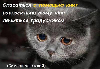 http://s8.uploads.ru/I3OvS.png