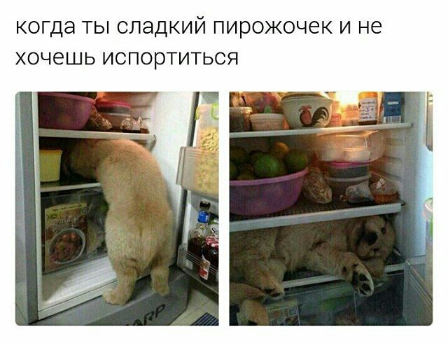 http://s8.uploads.ru/I4pMa.jpg