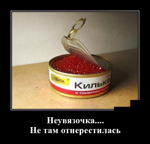 http://s8.uploads.ru/IAc6t.jpg