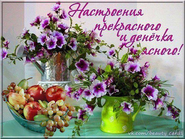 http://s8.uploads.ru/IO1tw.jpg