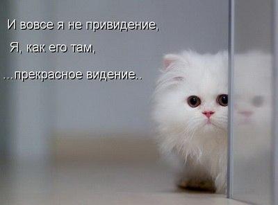 http://s8.uploads.ru/JoGx3.jpg