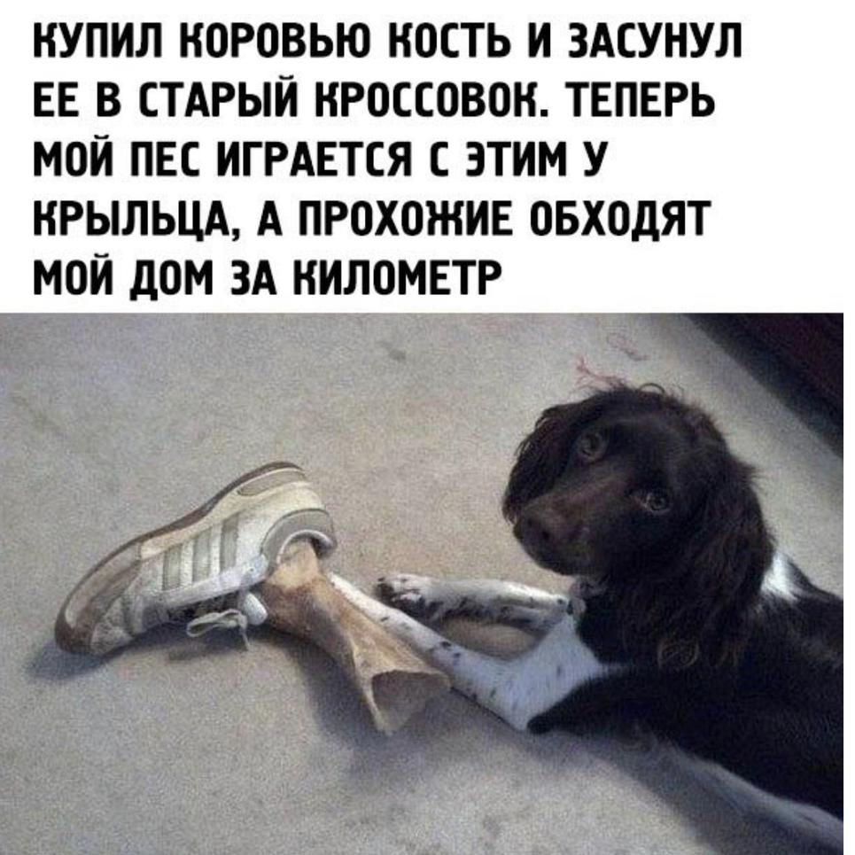http://s8.uploads.ru/NOzAS.png