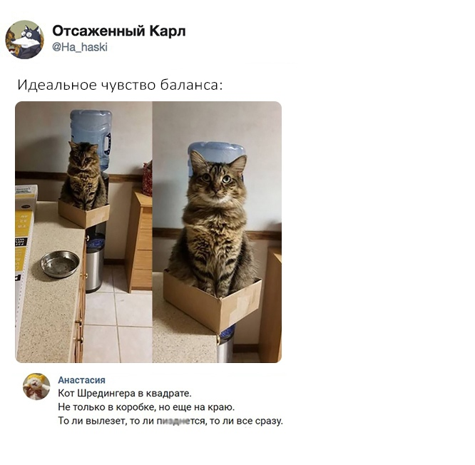 http://s8.uploads.ru/Pak8o.jpg