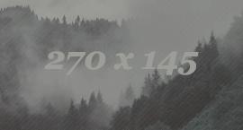 http://s8.uploads.ru/Pxy3s.jpg