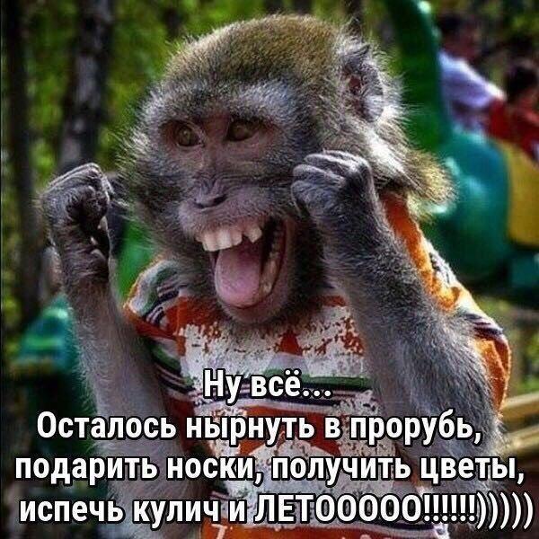 http://s8.uploads.ru/Q1FnR.jpg