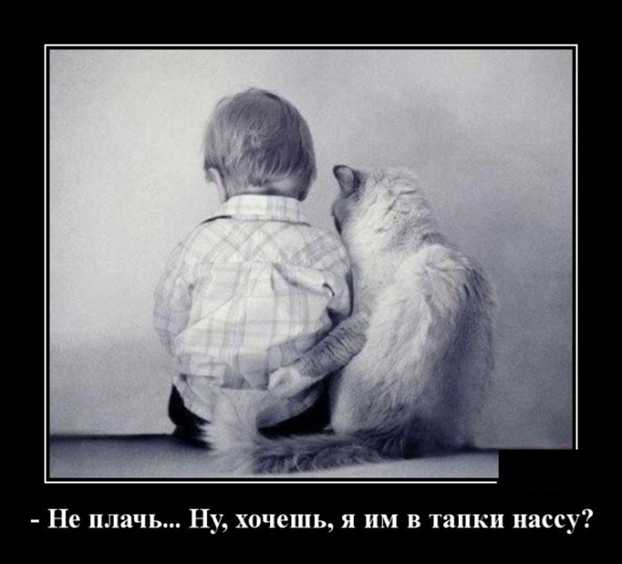 http://s8.uploads.ru/Q6gSL.jpg