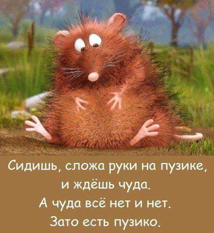 http://s8.uploads.ru/QqaOc.jpg