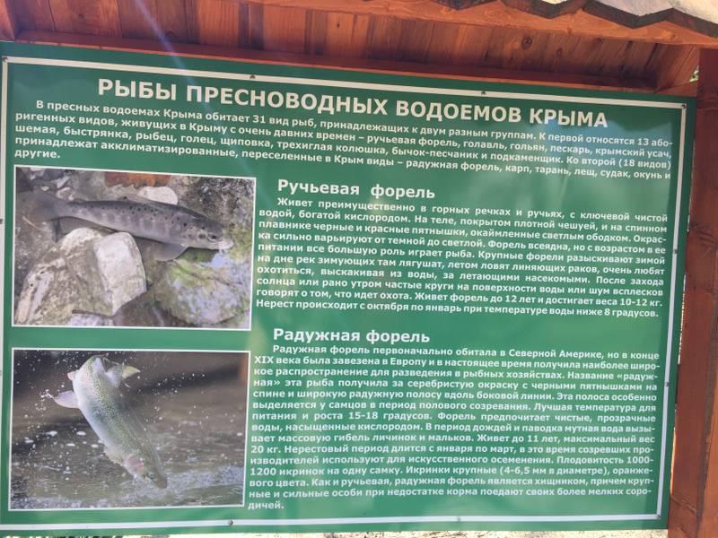 http://s8.uploads.ru/SMFdI.jpg