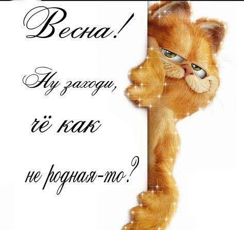 http://s8.uploads.ru/UYQvE.jpg
