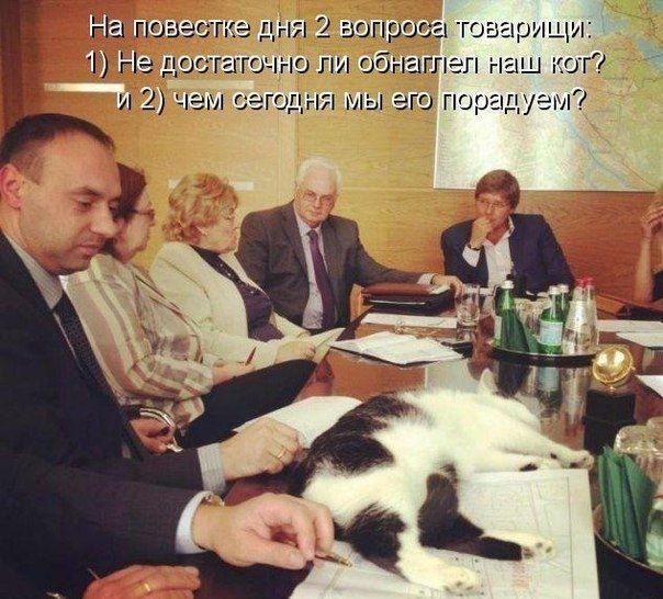 http://s8.uploads.ru/UcuQ3.jpg
