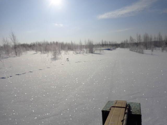 http://s8.uploads.ru/Uwhkq.jpg