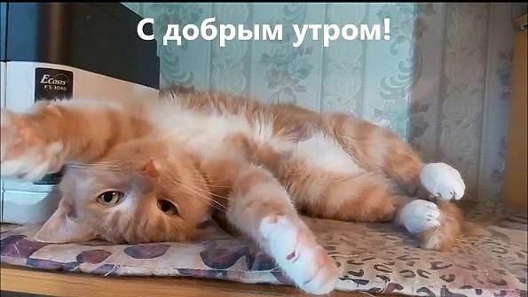 http://s8.uploads.ru/V4Xxr.jpg