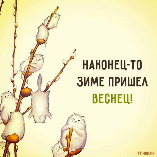 http://s8.uploads.ru/WpLkE.jpg
