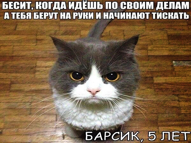 http://s8.uploads.ru/XjYFc.jpg