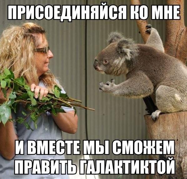 http://s8.uploads.ru/YnNaZ.jpg