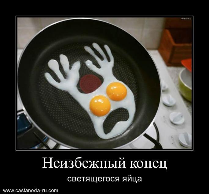 http://s8.uploads.ru/ZMIPL.jpg