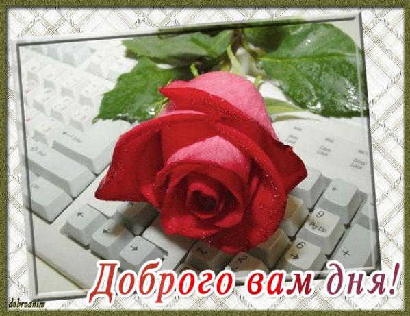 http://s8.uploads.ru/ZpM0Q.jpg