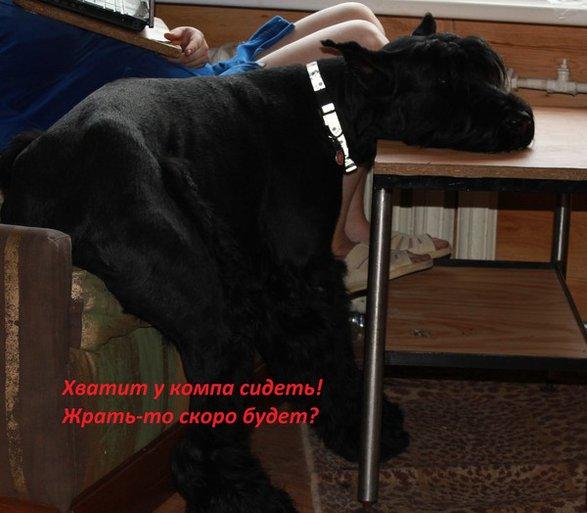 http://s8.uploads.ru/azlOp.jpg