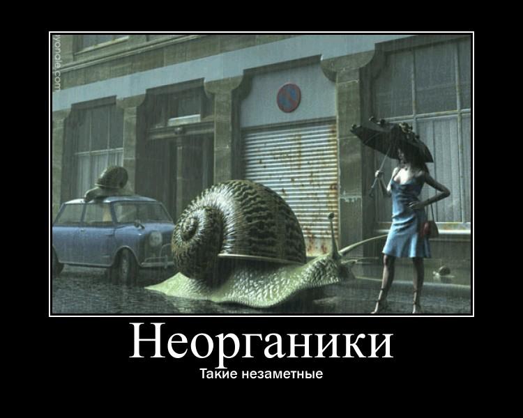 http://s8.uploads.ru/dp6vl.jpg