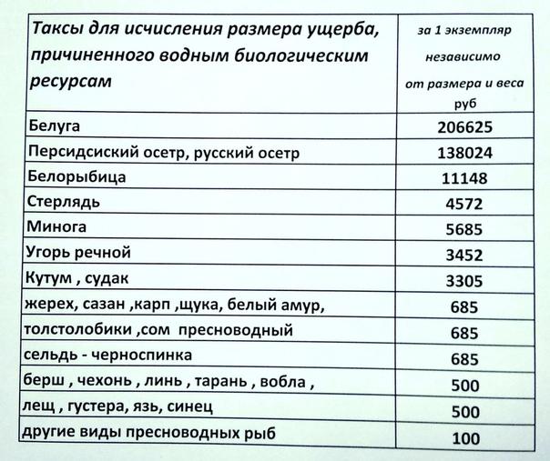 http://s8.uploads.ru/dza85.jpg