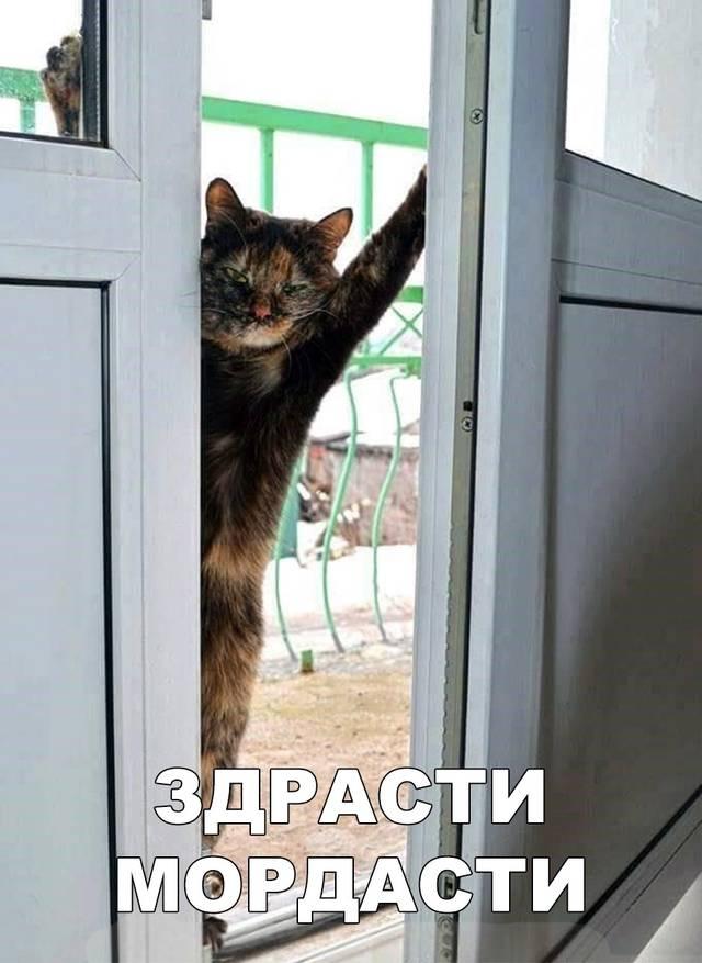 http://s8.uploads.ru/efPRN.jpg